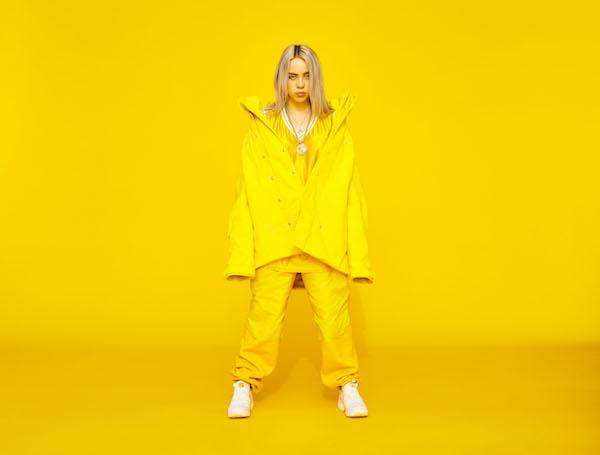 Interview + Photo Diary: Billie Eilish x Laneway 2018